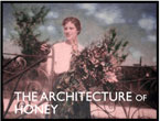 The Architecture of Honey